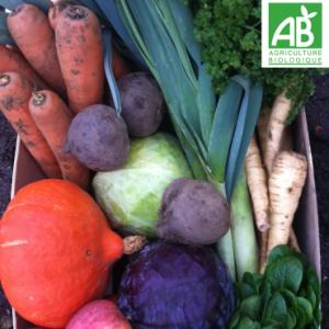 Panier-legumes-la guerie